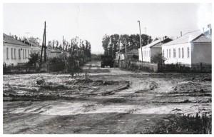 Улица  Пушкина 74 г. копия
